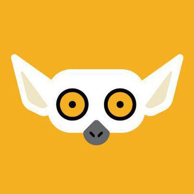 Чат Lemur