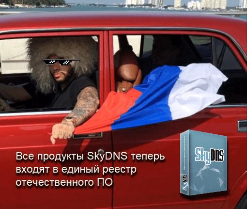 Продукты SkyDNS попали в реестр отечественного ПО