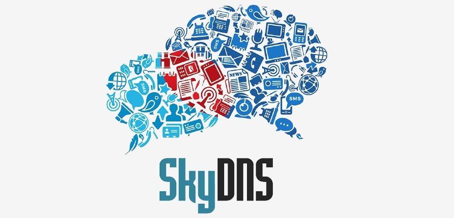 SkyDNS раздаёт школьникам защиту отопасных сайтов