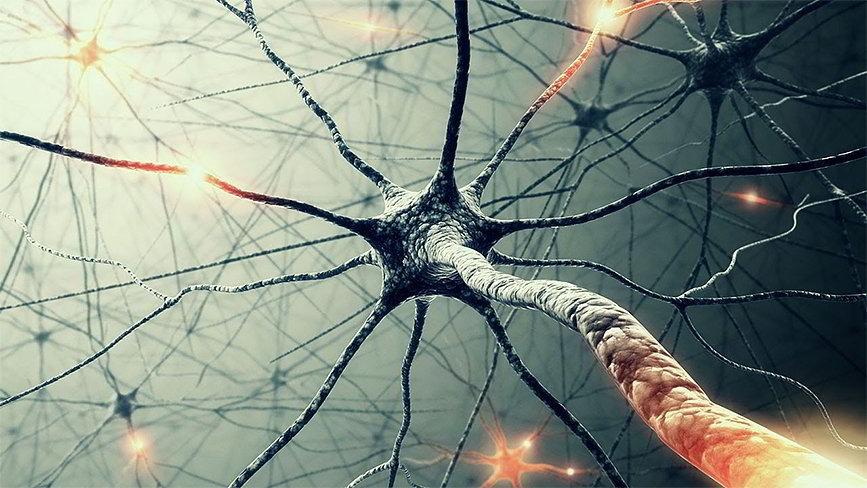 Битрикс24 встраивает нейронные сети