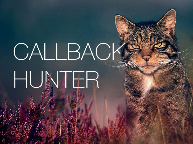 Расширение Callbackhunter стало доступно для Google Chrome
